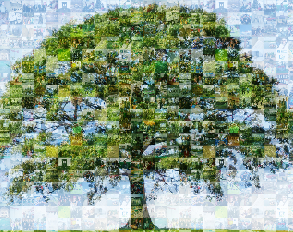 close up of mosaic mural of a tree in a field